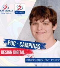 [Bruno Brighenti Perez]