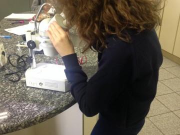 Experiência Laboratório 6º ano | DBA